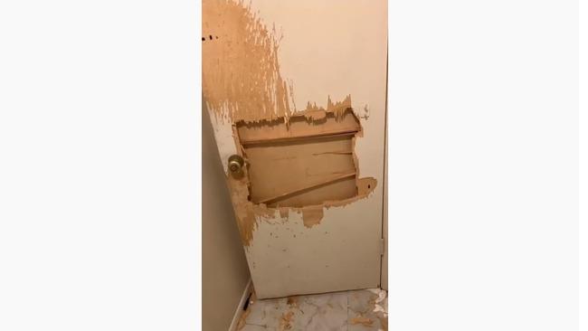 犬 浴室 大暴れに関連した画像-05