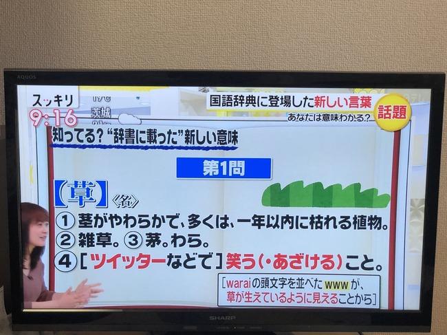 草 ネット用語 日テレ スッキリ 国語辞典に関連した画像-04