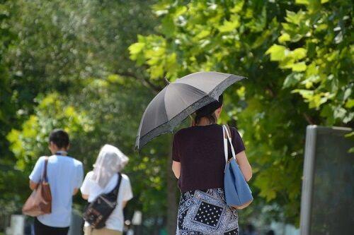 学校日傘禁止議論に関連した画像-01
