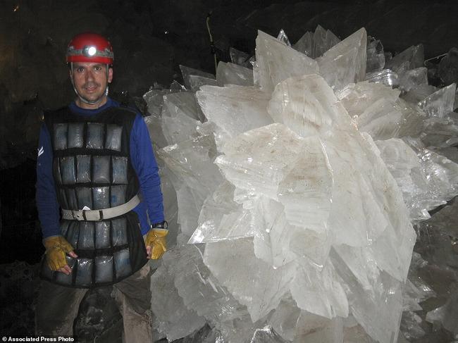 微生物 クリスタル 封印 生命体 結晶 5万年に関連した画像-06