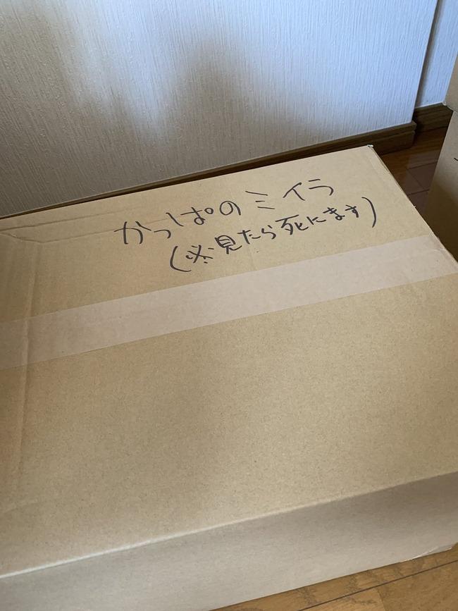 引越し 同人誌 ダンボール 荷物 カモフラージュに関連した画像-03