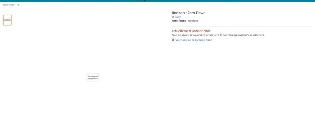 ホライゾン PC版 アマゾンに関連した画像-03