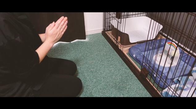 100日目に食われるブタ YouTube チャンネル 100日後 食べる 丸焼き 動画に関連した画像-06