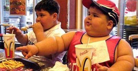 マクドナルド ダイエットに関連した画像-01