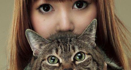 しょこたん 猫 中川翔子 マミタス 愛猫に関連した画像-01