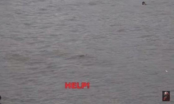 ユーチューバー 溺れるに関連した画像-05