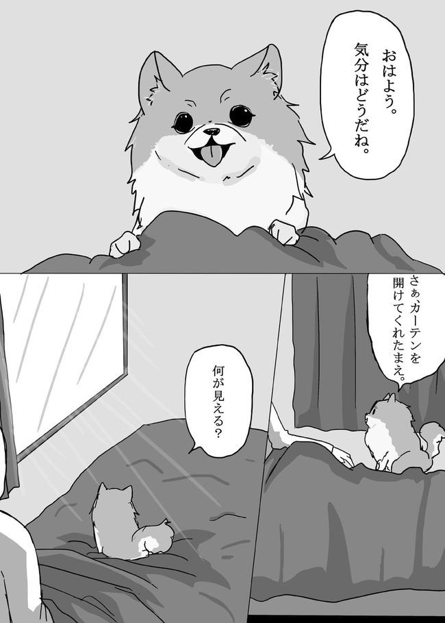 大塚明夫 ポメラニアン アニメ化に関連した画像-03