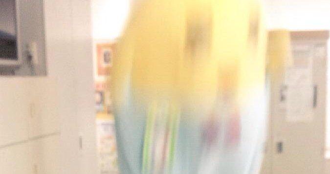ふなっしー インタビュー テレビ バラエティに関連した画像-01