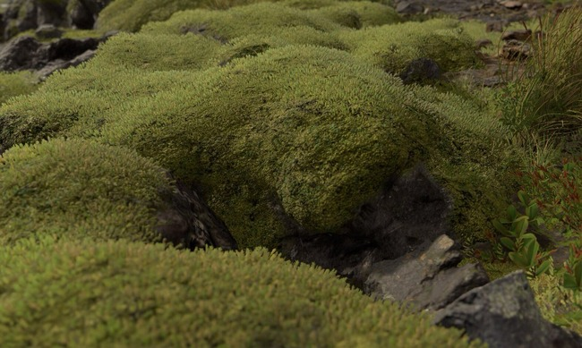 小島監督 デスストランディング 苔に関連した画像-02