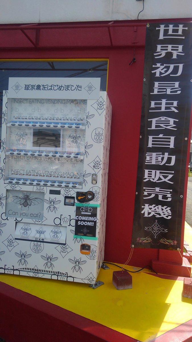 熊本県 昆虫食 自販機に関連した画像-02