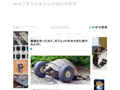 亀 カメ 両腕 ガジェットに関連した画像-02
