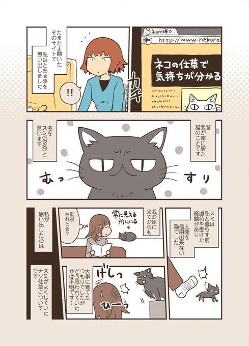 猫 ネコ クセ 瞬きに関連した画像-02