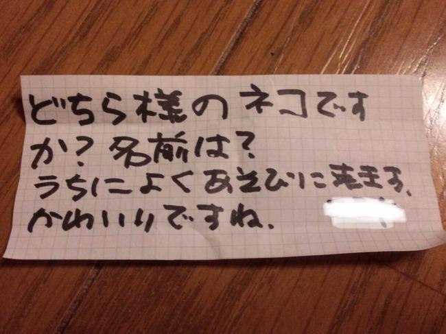 猫 首輪 手紙に関連した画像-02