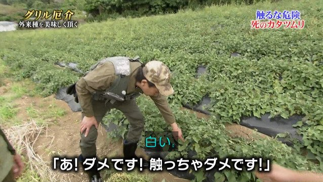 TOKIO カタツムリ 鉄腕ダッシュに関連した画像-04