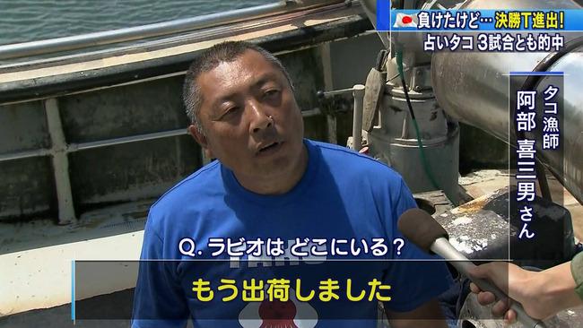 ラビオくん タコ 出荷 タコ箱漁オーナー ワールドカップ 占い 結果 クレーム 残酷に関連した画像-03