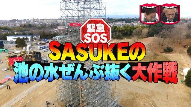 SASUKE サスケ 池の水 水曜日のダウンタウンに関連した画像-03