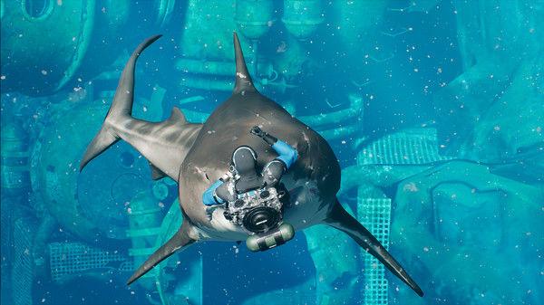 サメバトルロイヤルに関連した画像-05