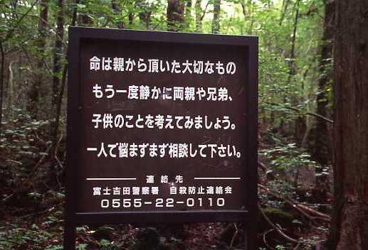 日本 自殺名所 青木ヶ原樹海 観光名所 ブレイク 自殺に関連した画像-01