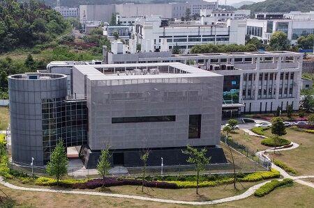 中国 武漢 研究所 WIV 研究者 コウモリ 素手 噛まれる 映像 削除 に関連した画像-01