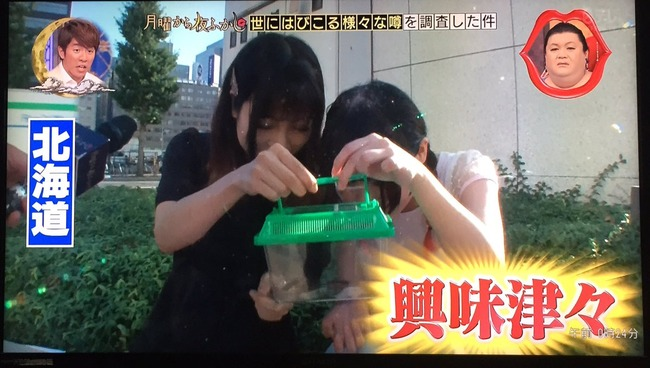 ゴキブリ 北海道民 反応に関連した画像-02