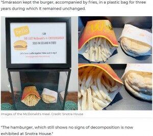 マクドナルド マック ハンバーガー チーズバーガー ポテト 腐らない 10年間 に関連した画像-03