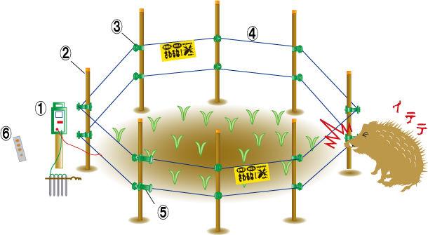 電気柵 感電に関連した画像-01