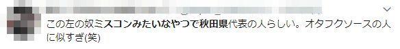 女子高生 ミスコン 秋田県 誹謗中傷 さやごん 辞退に関連した画像-05