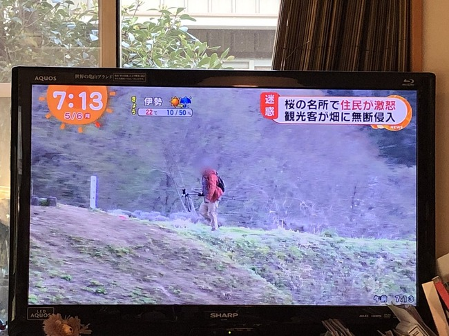 カメラ 桜 私有地 不法侵入に関連した画像-02