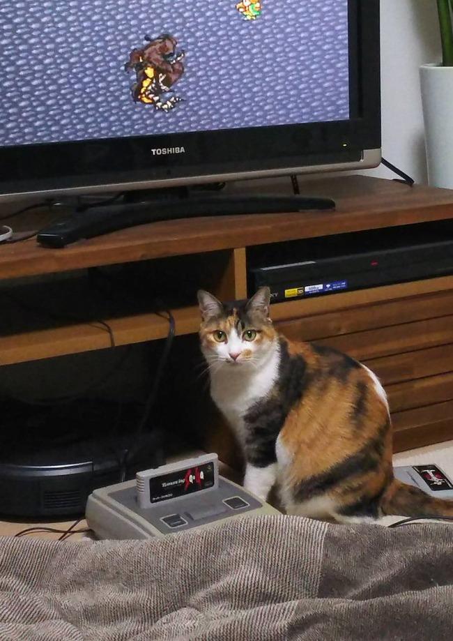 ゲーマー 冷や汗 画像 スーファミ ファミコン ロマサガに関連した画像-02