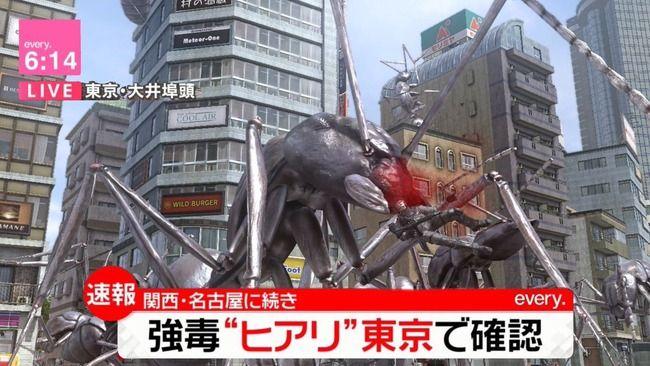 ヒアリ警察 活動停止 ヒアリ 外来種に関連した画像-01