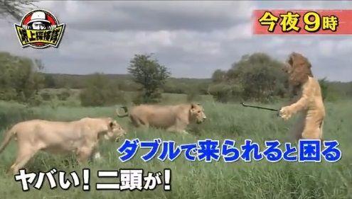 坂上探検隊 炎上 狩野英孝に関連した画像-01