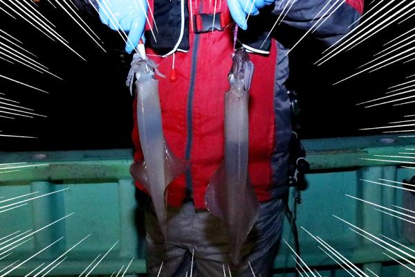 謝罪会見 漁船 フラッシュ 光 イカ 釣れる 検証 に関連した画像-12