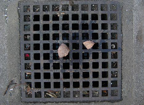 コロンビア 刑務所 下水溝 バラバラ遺体に関連した画像-01