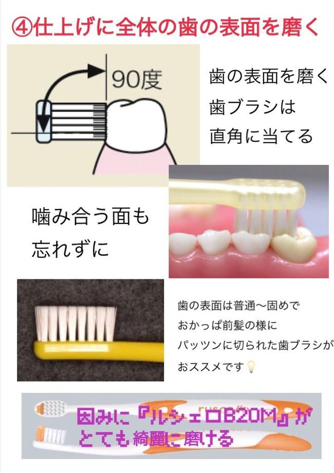 歯 歯科衛生士 オタク ハミガキに関連した画像-05