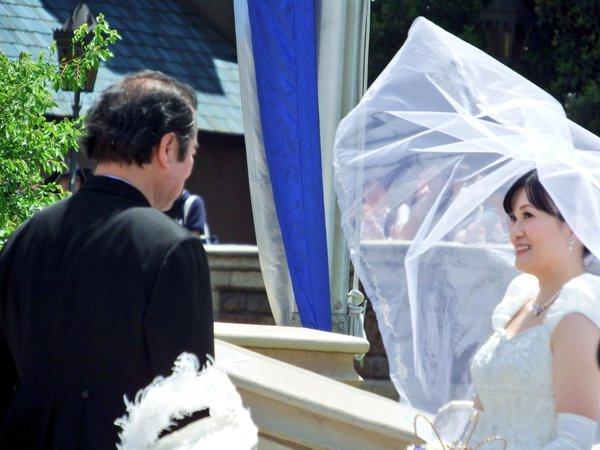 西又葵 結婚式 ディズニーランド シンデレラ城 イラストレーター 三宅淳一に関連した画像-18