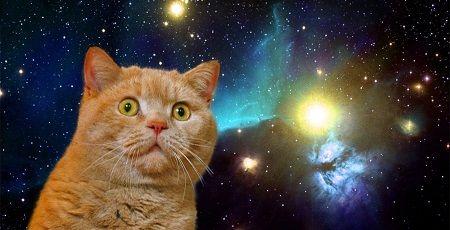 NASAが2月23日深夜3時に重大発表!太陽系外惑星について大発見があるとのこと!ついに地球外生命体が・・・