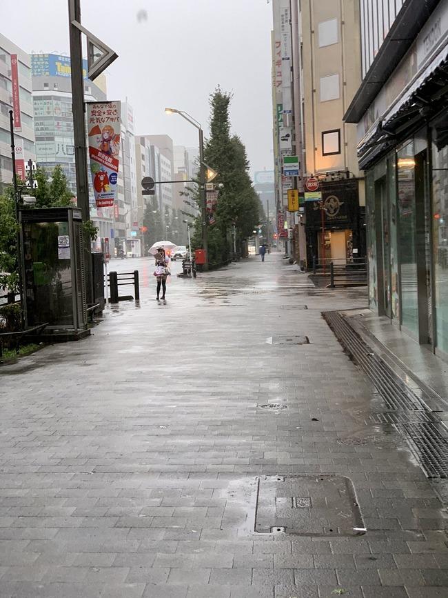 秋葉原 メイドカフェ 台風に関連した画像-02