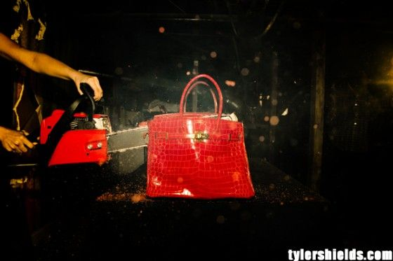 Clint-Eastwood-daughter-Francesca-burns-100000-Birkin-bag-Tyler-Shields-art-1-560x373 (2)