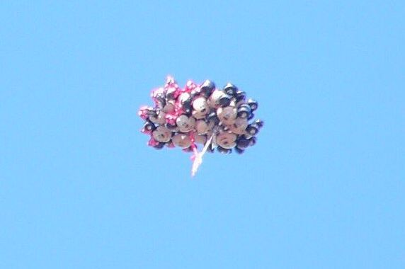 ディズニー 風船 バルーンに関連した画像-04