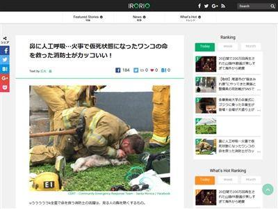 犬 人工呼吸 消防士に関連した画像-02