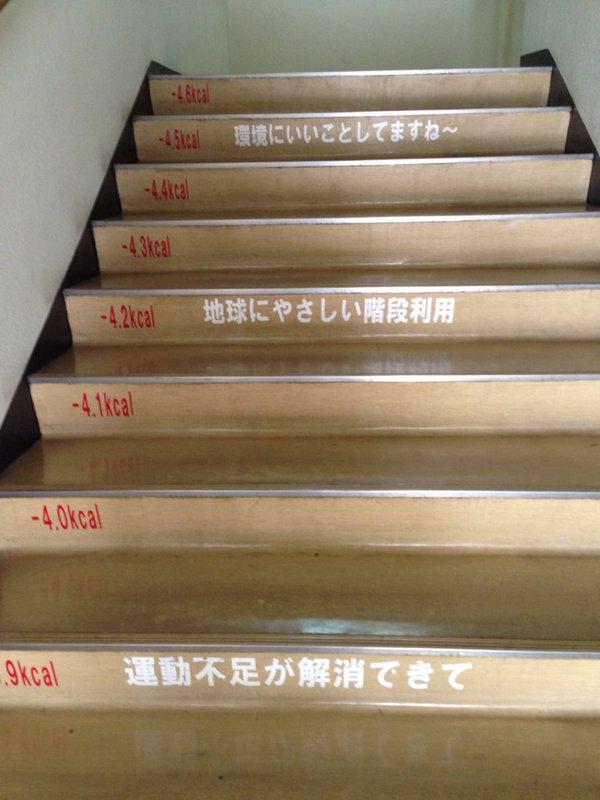 区役所 階段 褒めるに関連した画像-04