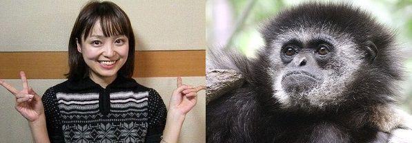 金田朋子 シロテテナガザル 周波数 声優に関連した画像-01
