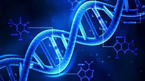 DNA 中国 息子 子どもに関連した画像-01