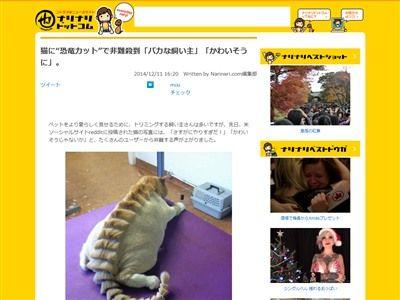 猫 ペットに関連した画像-02