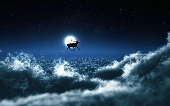 クリスマス 満月に関連した画像-01