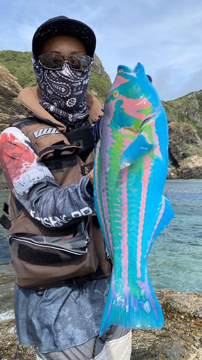 魚 釣り 色 キヌベラに関連した画像-02