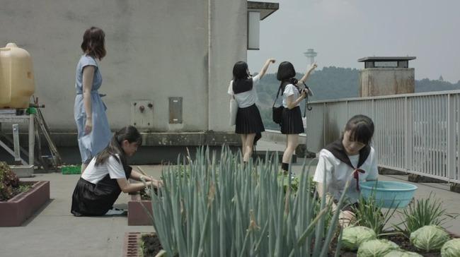 がっこうぐらし 実写版 キャベツ 屋上菜園に関連した画像-02