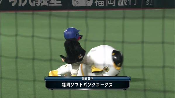 畜生ペンギン つば九郎 ふうさんに関連した画像-03