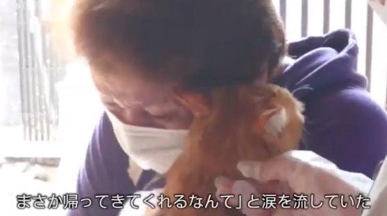 台風19号 猫 行方不明 再開 動画に関連した画像-10