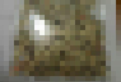 ママ 宝物 息子 シュレッダー お札 お金 造幣局 日本銀行 に関連した画像-01